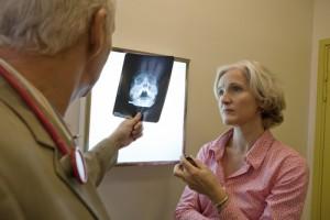 sinus-surgery-consultation