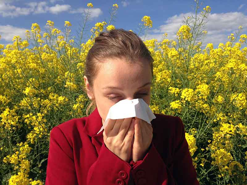 Tips for Beating Seasonal Allergies