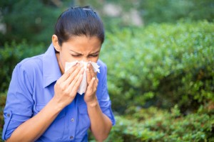 Chronic Sinusitis Treatment NYC