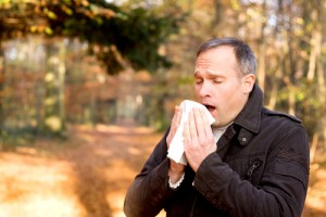 Hay Fever vs Sinus Infections