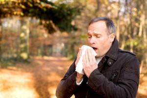 Hay Fever vs Sinus Infections