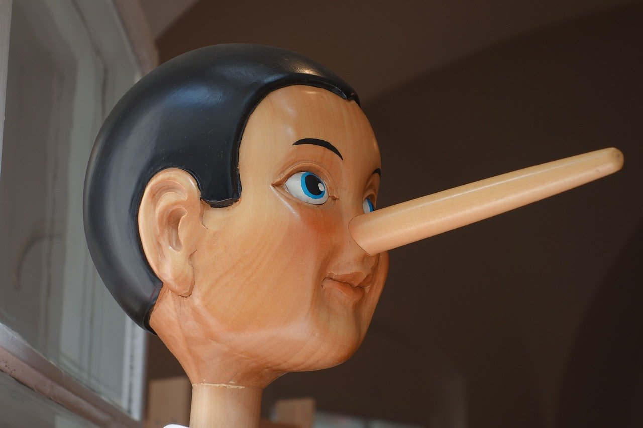 Facts About the Nose