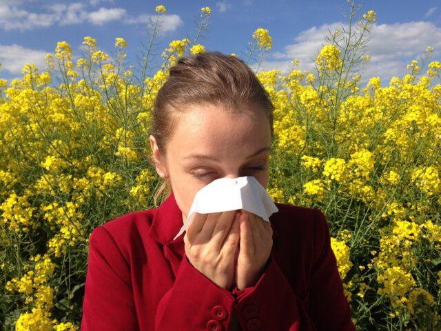 Summer Sinus Issues